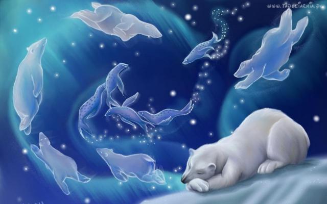 Зимний сон, зима, холод, снег,
