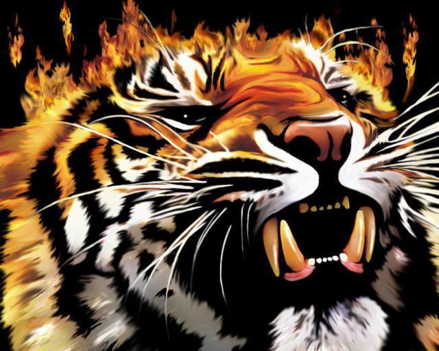 Тигр бисер, оригинал