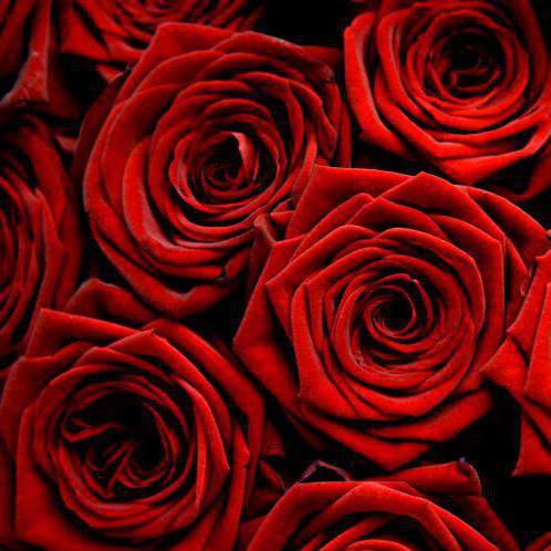 "Подушка ""Ковер из роз"","