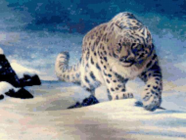 Снежный барс, животные