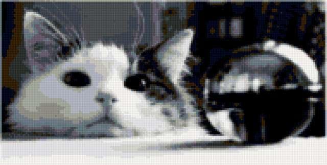 Кот и шарик(черно-белые