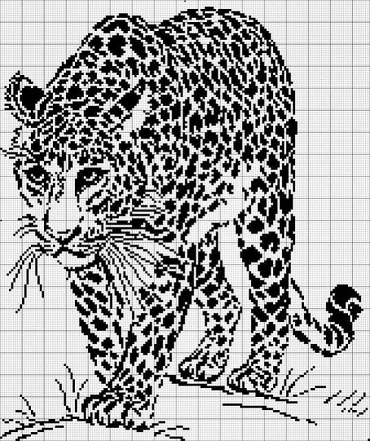 Черно=белый леопард, оригинал