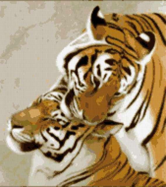 Пара тигров рыжие