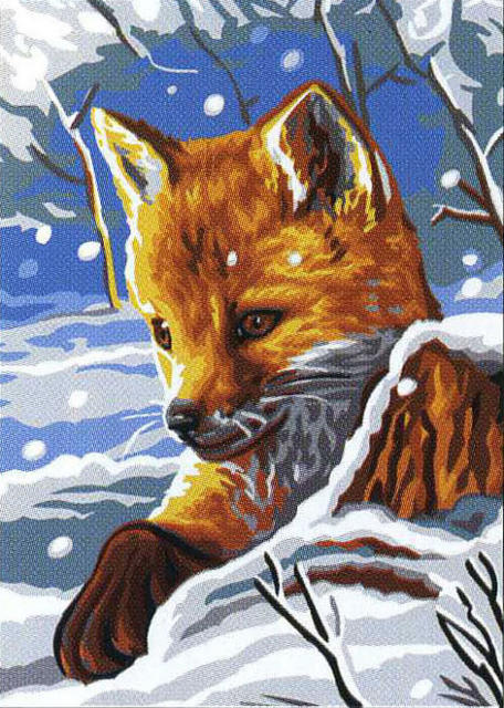 Лисёнок, лиса, зима