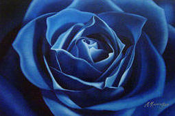 Blue rose, flower