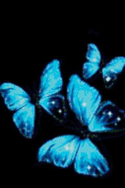 Черный фон и голубые бабочки,