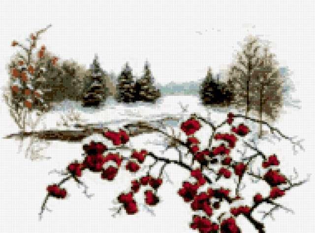Зимняя вишня, небо, зимняя