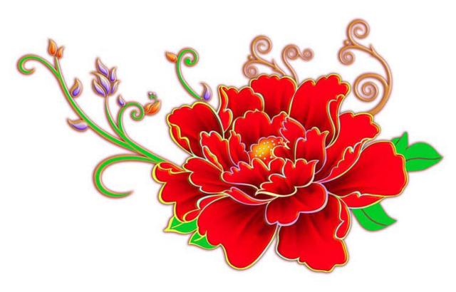 Пион, пион, цветок, цветы,