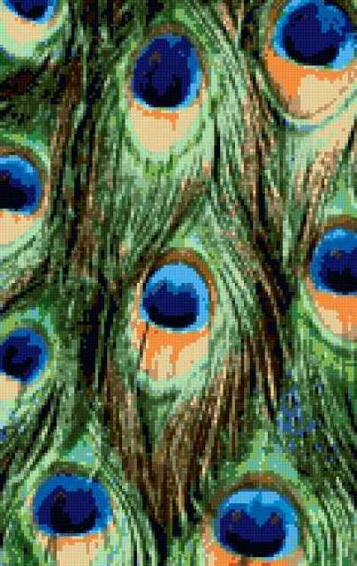Пано Павлиньи перья