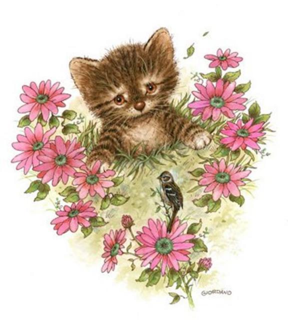 кот в цветах,