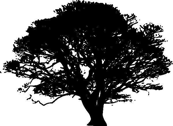 Дерево монохром,