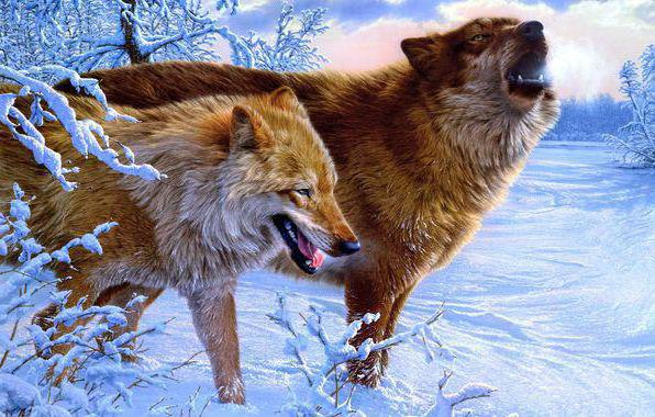 Волки зимой, оригинал