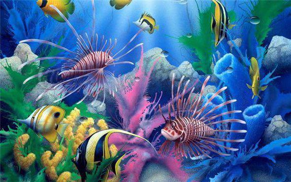 Подводный мир 1, океан