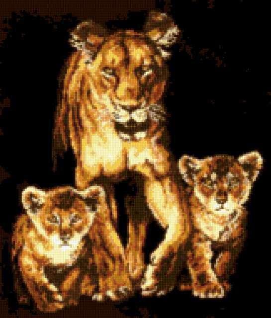 К схеме вышивки «Львица со