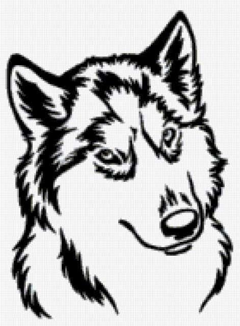 Волк, предпросмотр