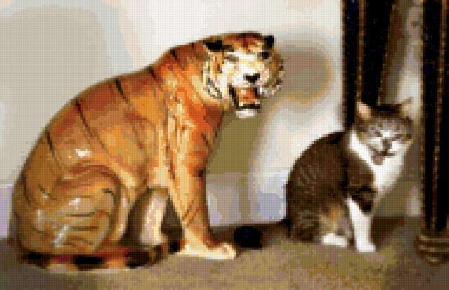 Семейство кошачьих, тигр