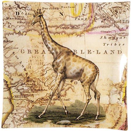Жираф, животные, африка