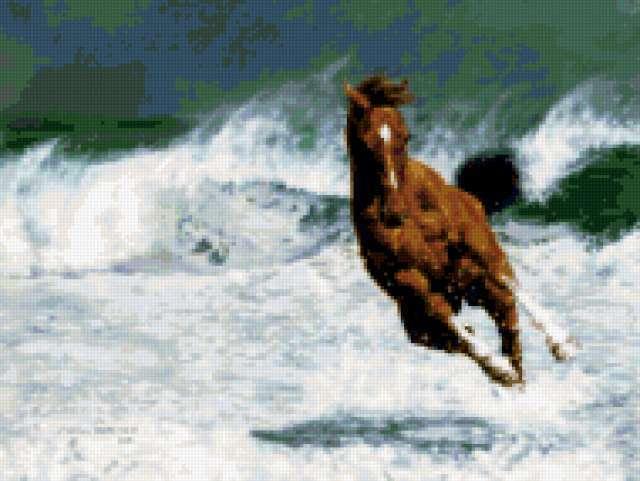 Бег, лошадь, море
