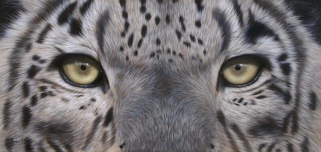 Глаза барса, картина, дикая