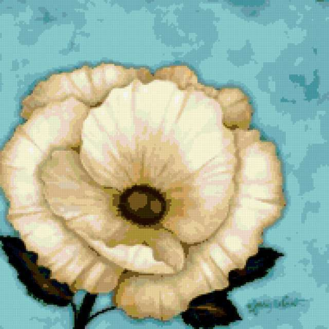 Белый цветок на голубом фоне,