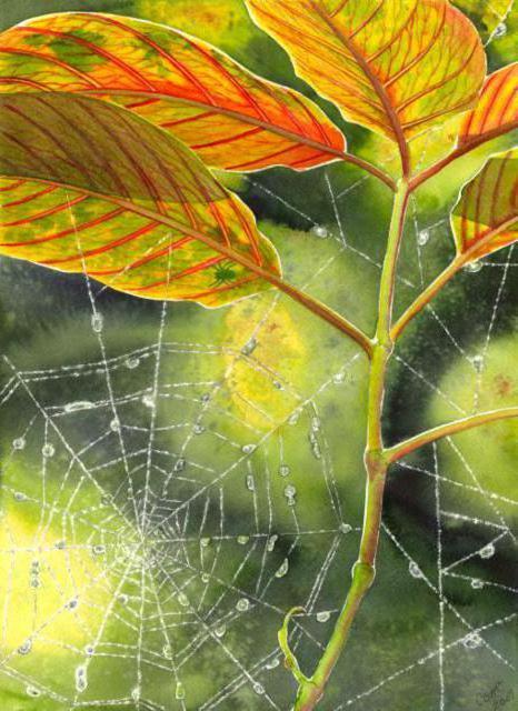 паутинка, цветок, листики,