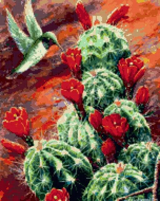 Цветок кактуса, предпросмотр