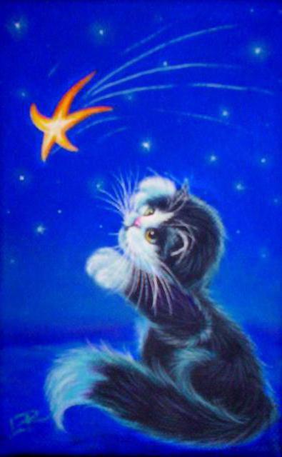 Кот и звездочка, оригинал