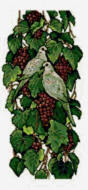 Виноград и голуби