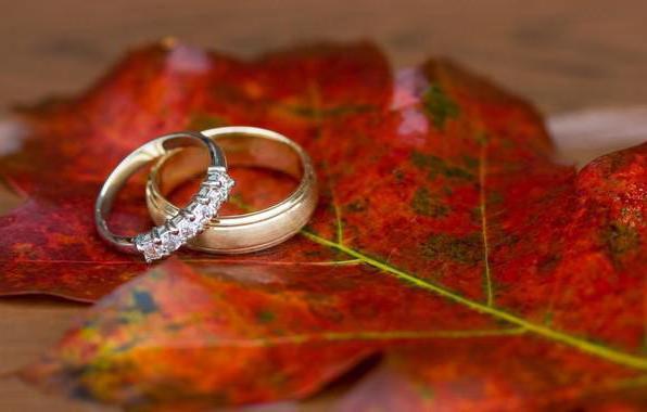 Обручальные кольца, картина