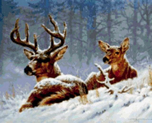 Олени в зимнем лесу,