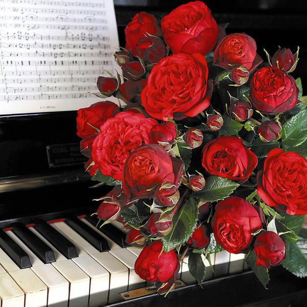 Цветы и музыка, оригинал