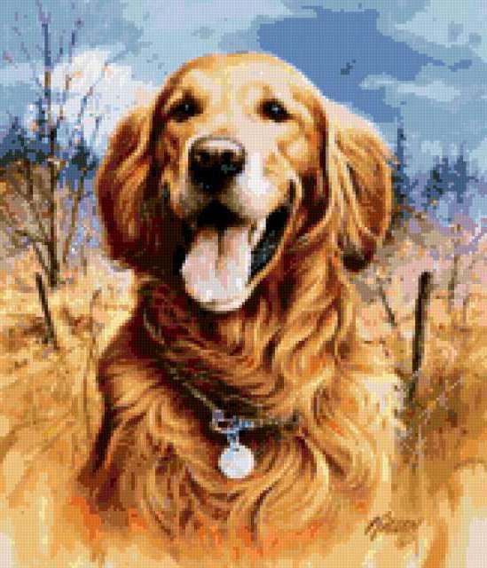 портрет собаки, картина