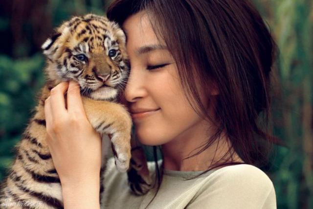 Девушка с тигренком, оригинал