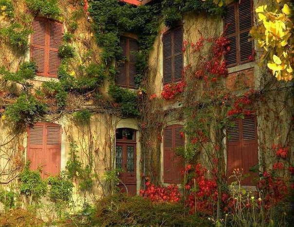 Заброшенный дворик, оригинал