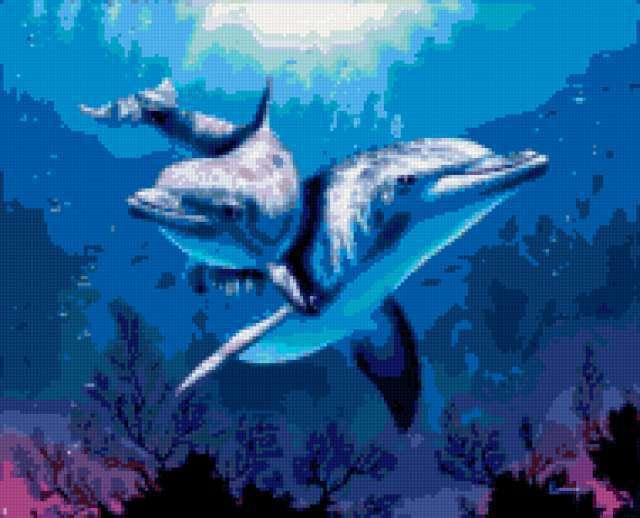 Пара дельфинов, предпросмотр