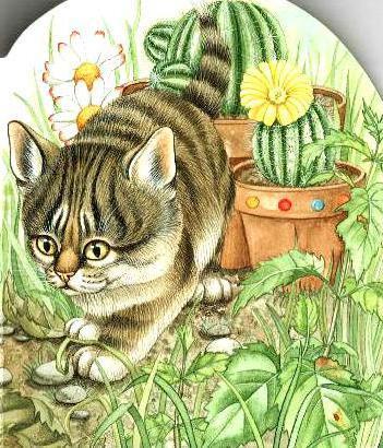 Котёнок и кактус, оригинал