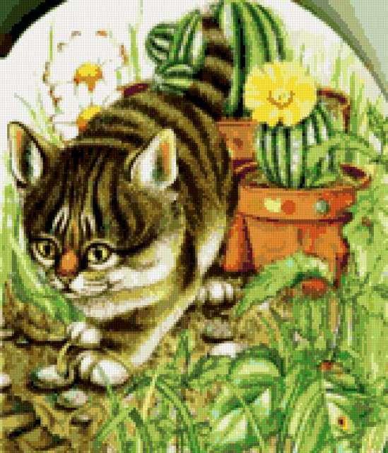 Котёнок и кактус, предпросмотр