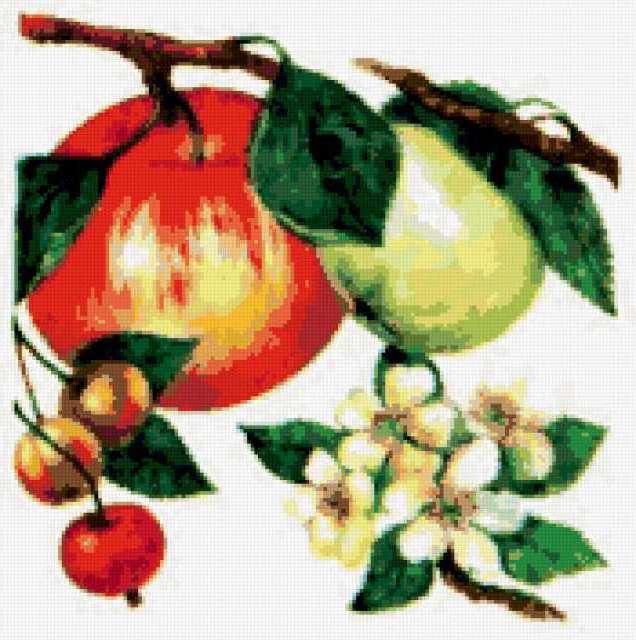 Яблоки и вишенки, предпросмотр