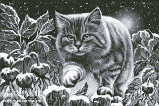 Кот-охотник, охота, усатый,