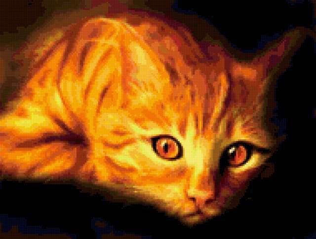 Задумчивый, рыжий кот
