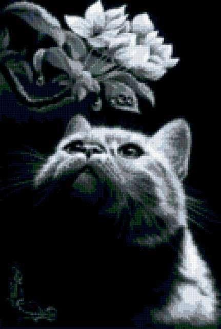 Кот с магнолией, предпросмотр