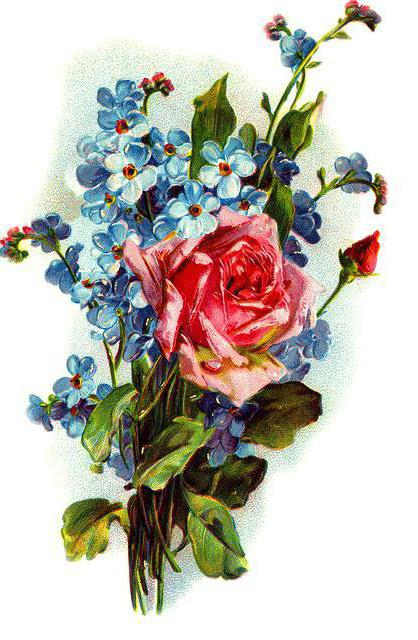 Розы и незабудки, оригинал