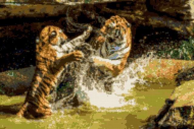 Тигрята, предпросмотр