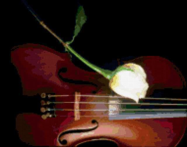 Скрипка и роза, натюрморт