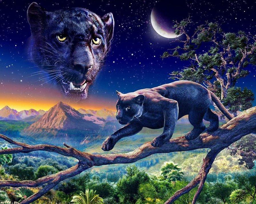 пантера, оригинал