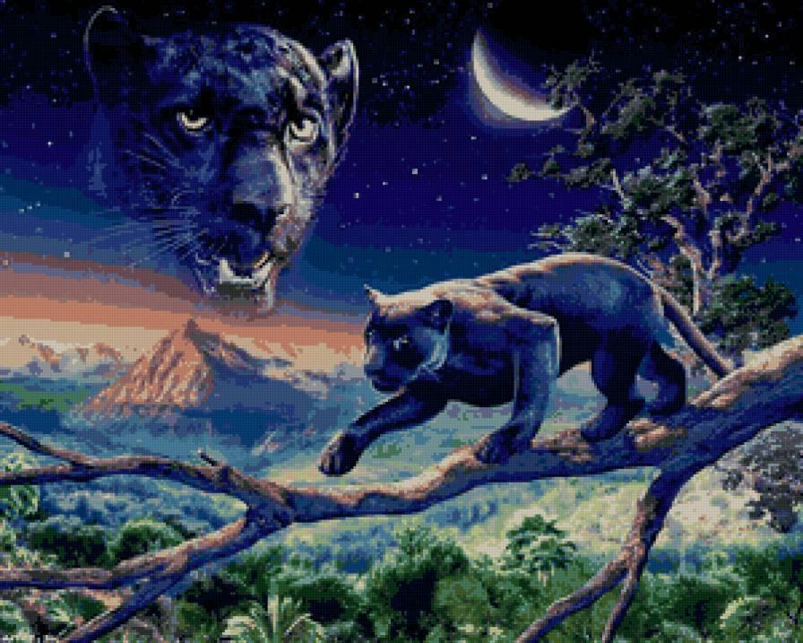 пантера, предпросмотр