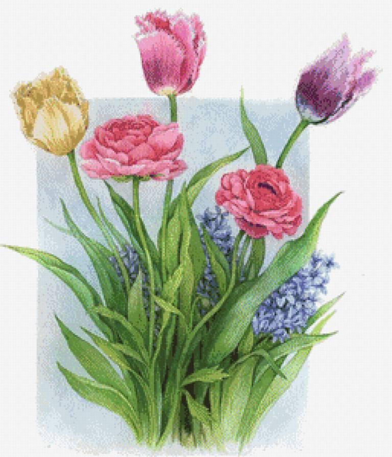 Нежные цветы, Гиацинты, пионы,