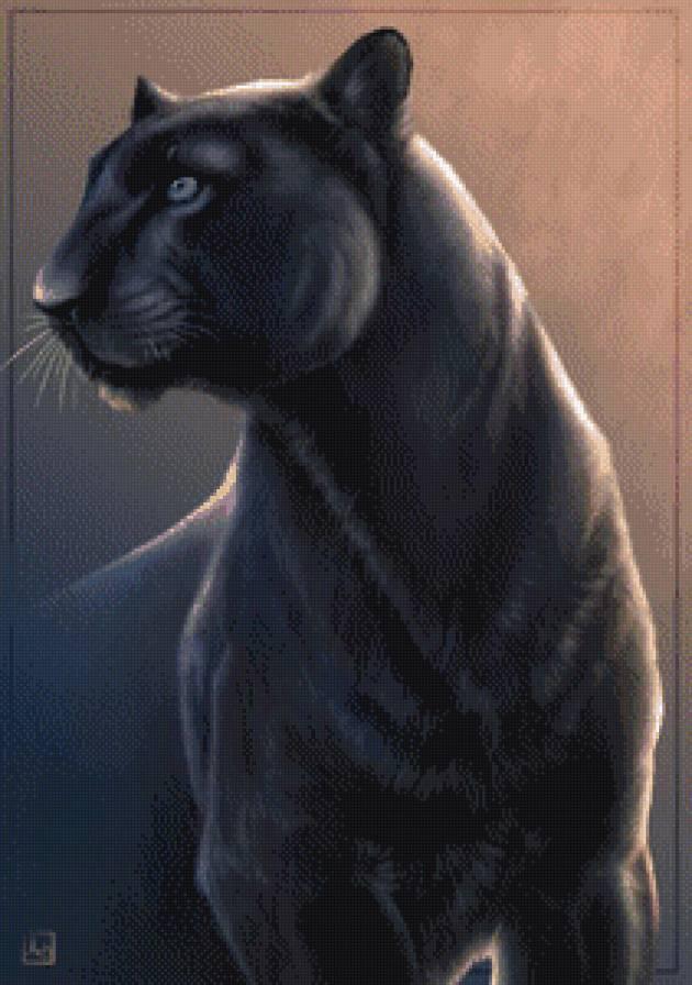 черная пантера, предпросмотр