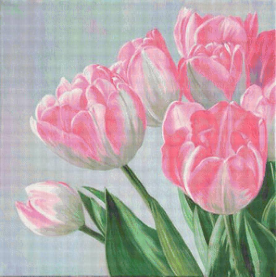 схема вышивка крестом розовые тюльпаны в вазе